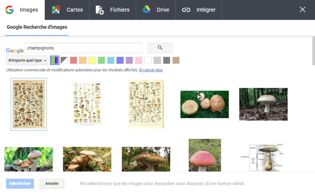 option ajout image book creator